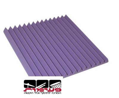 ספוג אקוסטי 60 על 60 Speed case T XP-01 Purple